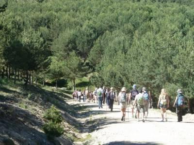 Senderismo valle Río Lozoya - Río Aguilón y Cascada del Purgatorio; turismo aventura; rutas sende